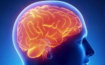 Отек головного мозга: причины, последствия