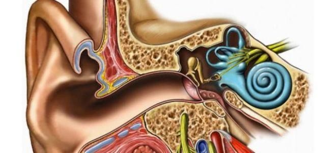 Невринома (шваннома) слухового нерва: причины, симптомы, лечение