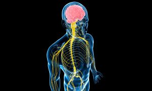 Наследственные заболевания нервной системы