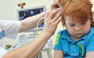 Нейросонография – что она исследует?