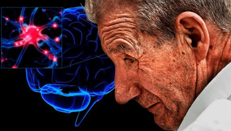 Мозг и мужчина