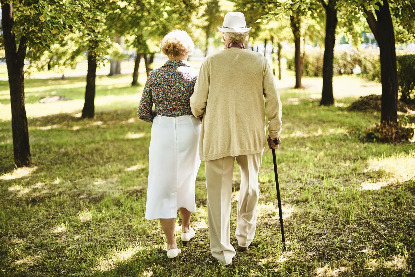 Прогулка стариков