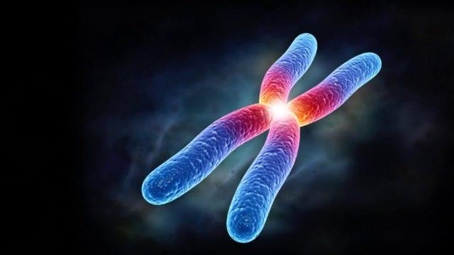 Хромоса