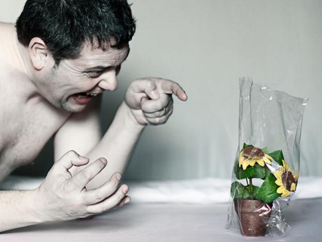 Мужчина кричит на цветок